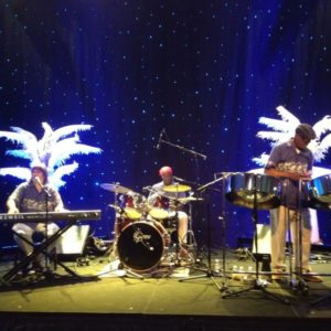 White-Eyed Lizard Band