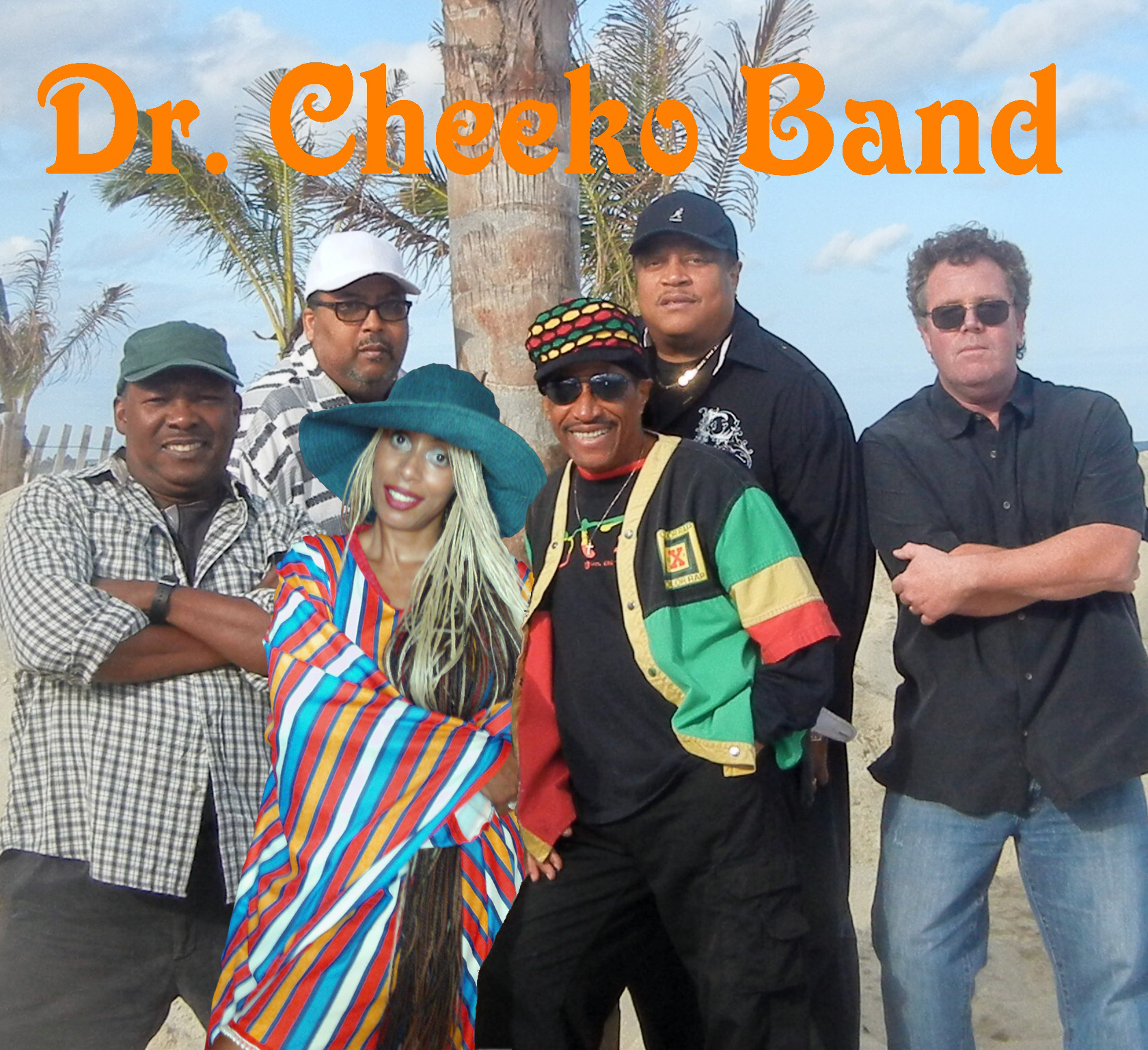 Dr. Cheeko Band