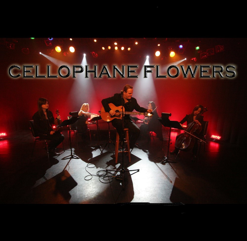 Cellophane Flowers